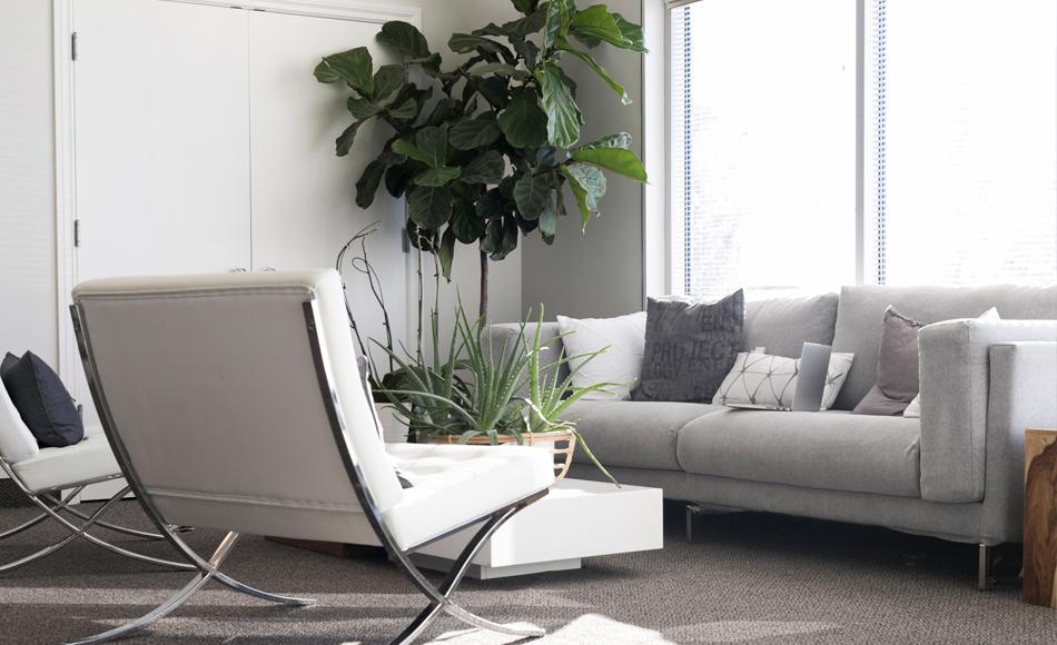 living-room2-free-img.jpg